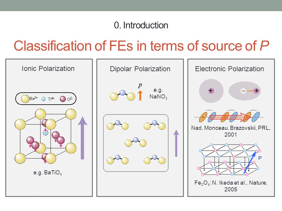 0. Introduction Classification of FEs in terms of source of P