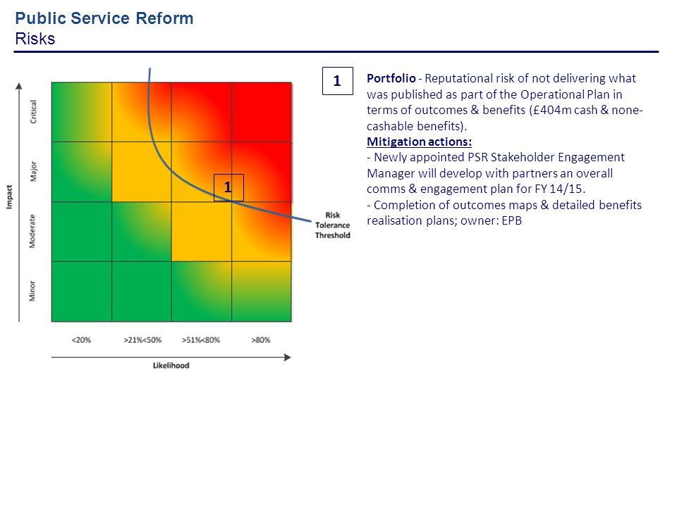 Public Service Reform Risks 1 1
