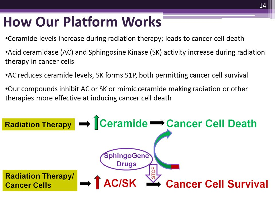How Our Platform Works Ceramide levels increase during radiation therapy; leads to cancer cell death.