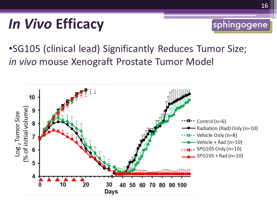 In Vivo Efficacy SG105 (clinical lead) Significantly Reduces Tumor Size; in vivo mouse Xenograft Prostate Tumor Model.