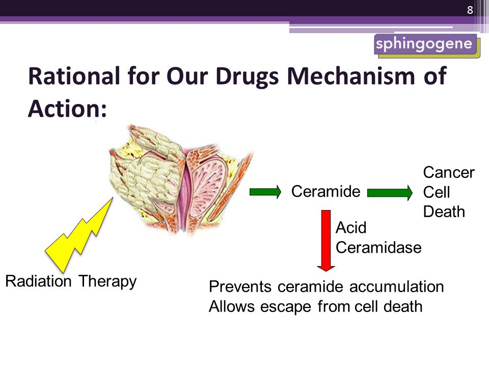 Rational for Our Drugs Mechanism of Action: