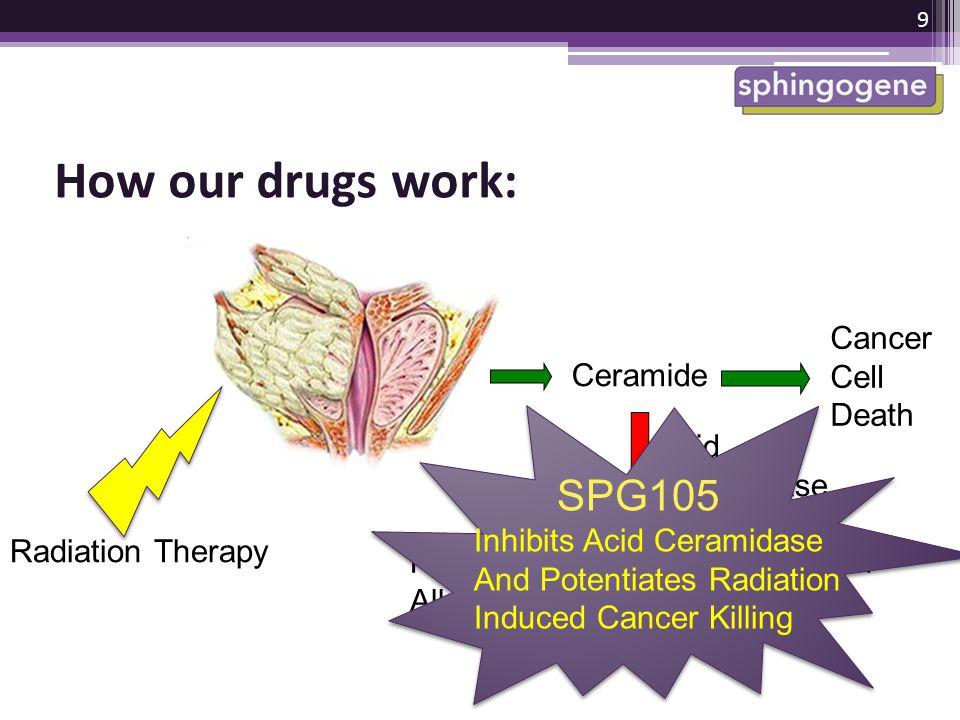 How our drugs work: SPG105 Cancer Cell Ceramide Death Acid Ceramidase