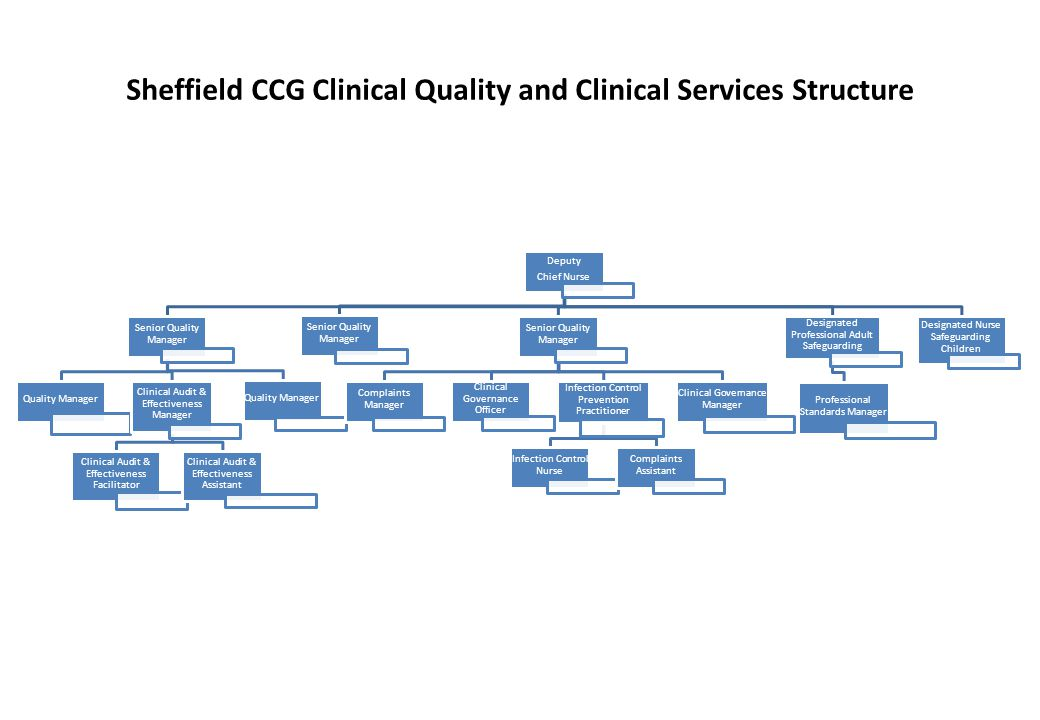 Sheffield CCG Clinical Quality and Clinical Services Structure