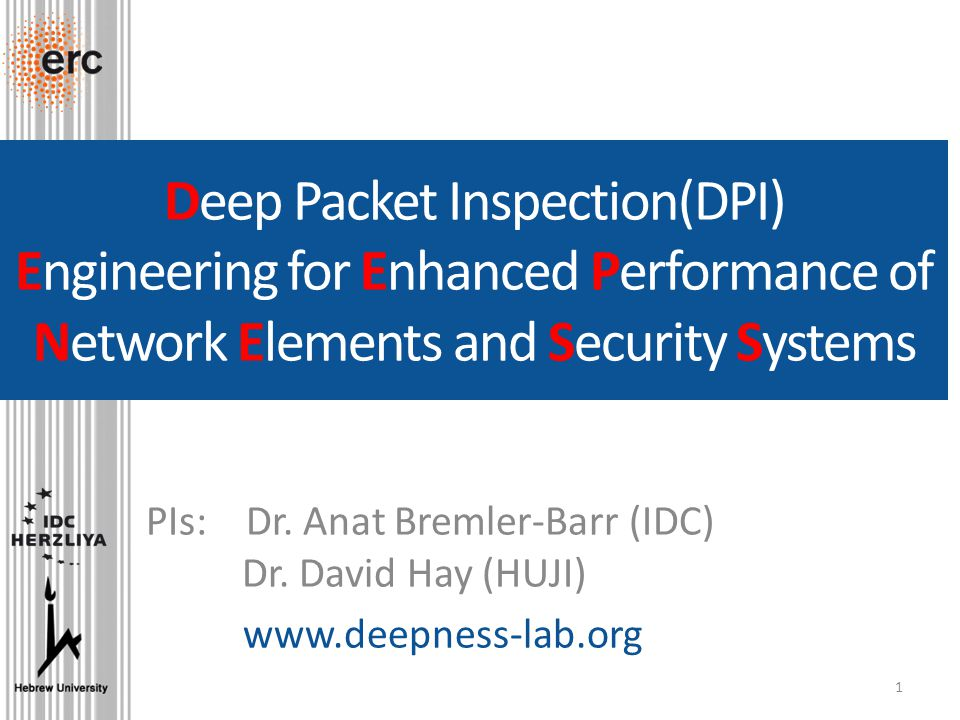 Deep Packet Inspection(DPI) Engineering for Enhanced Performance of Network  Elements and Security Systems PIs: Dr  Anat Bremler-Barr (IDC) Dr  David