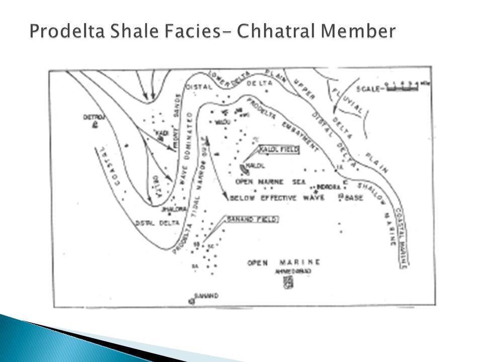 Prodelta Shale Facies- Chhatral Member