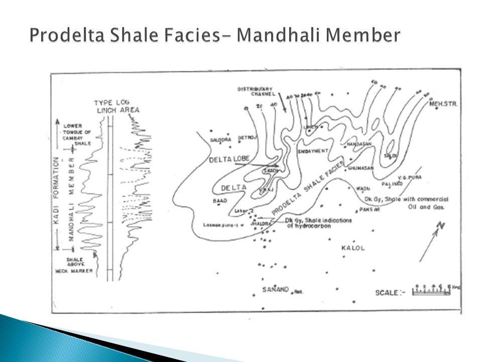 Prodelta Shale Facies- Mandhali Member