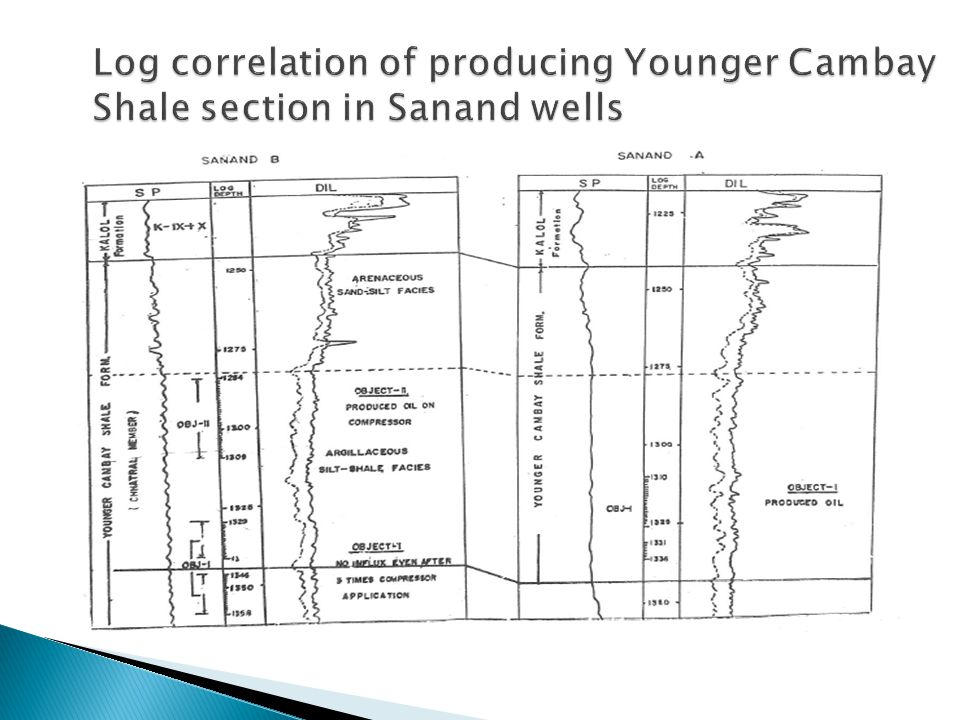 Log correlation of producing Younger Cambay Shale section in Sanand wells