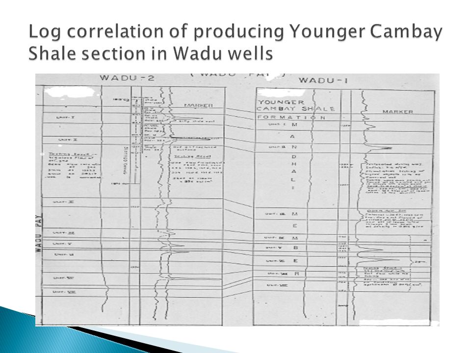 Log correlation of producing Younger Cambay Shale section in Wadu wells