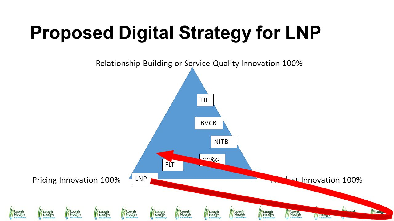 Proposed Digital Strategy for LNP