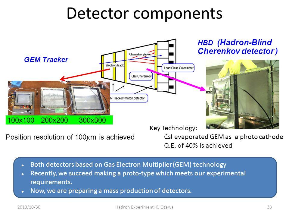Hadron Experiment, K. Ozawa