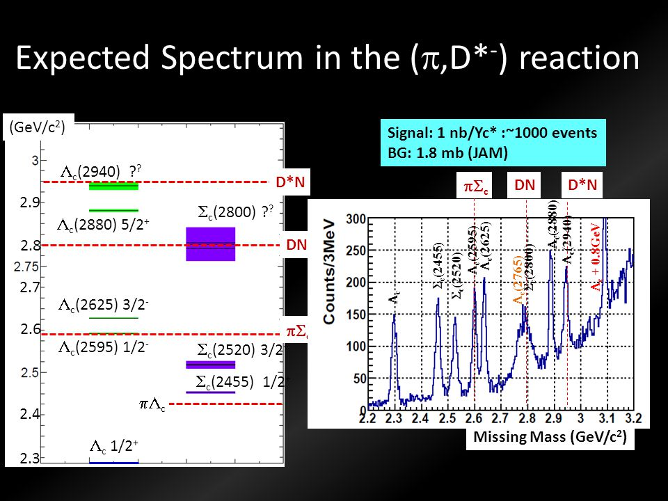Expected Spectrum in the (p,D*-) reaction