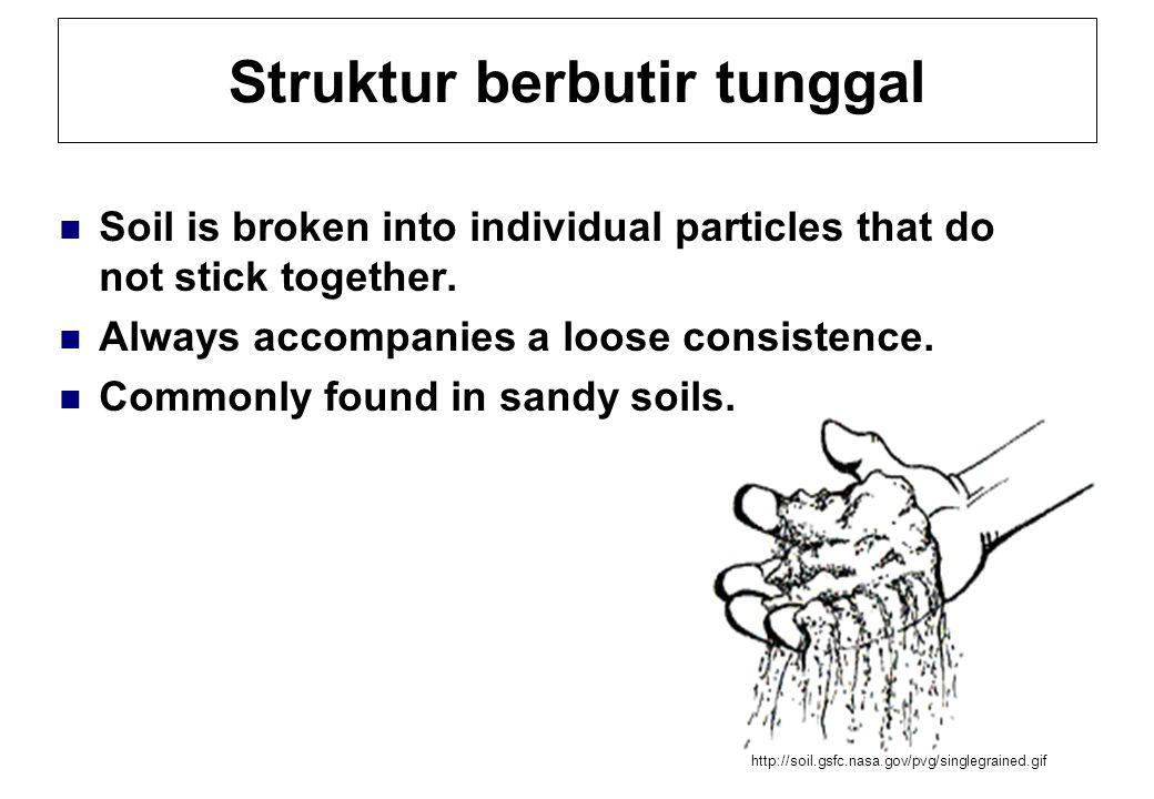 Struktur berbutir tunggal