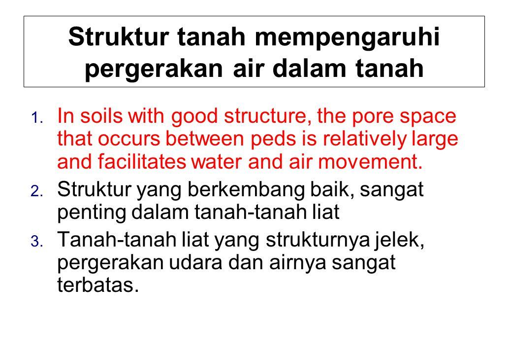 Struktur tanah mempengaruhi pergerakan air dalam tanah