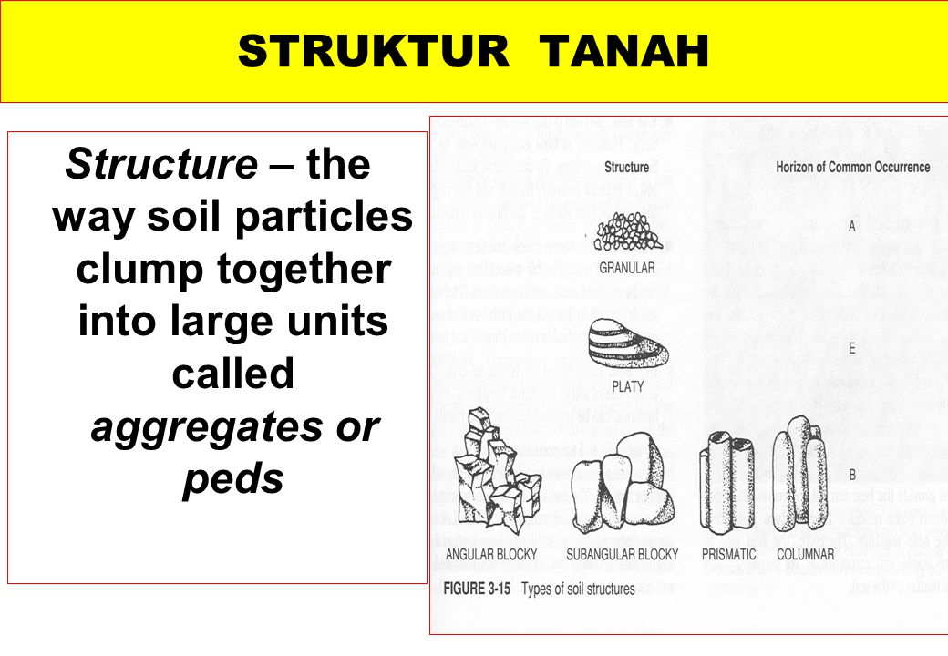 STRUKTUR TANAH Structure – the way soil particles clump together into large units called aggregates or peds.