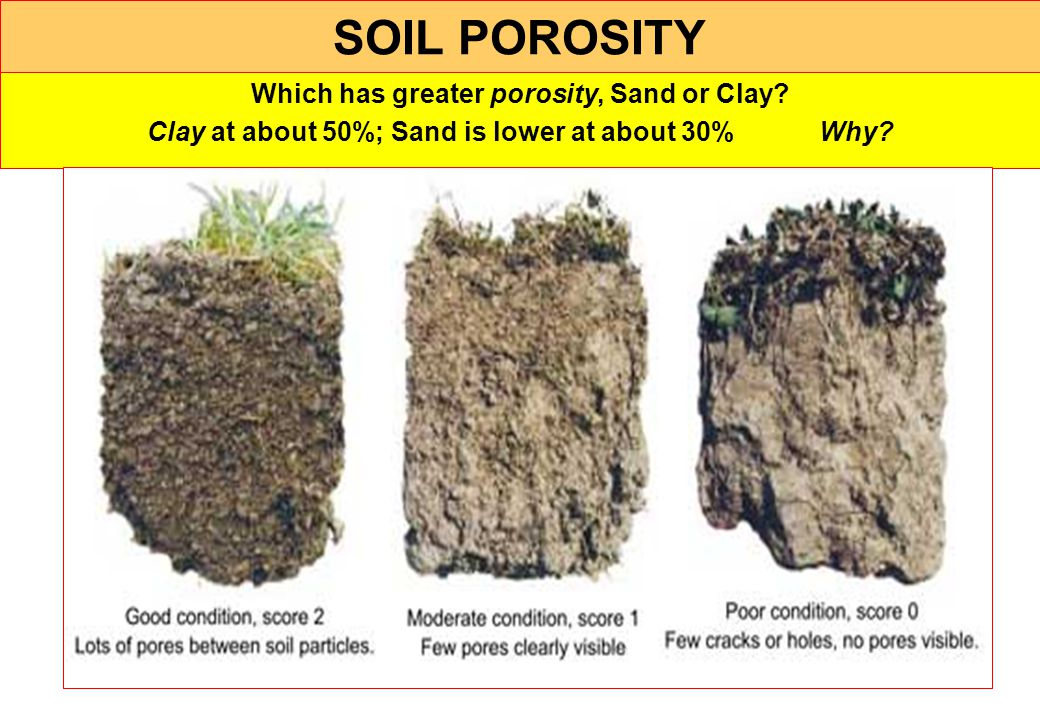 SOIL POROSITY Which has greater porosity, Sand or Clay