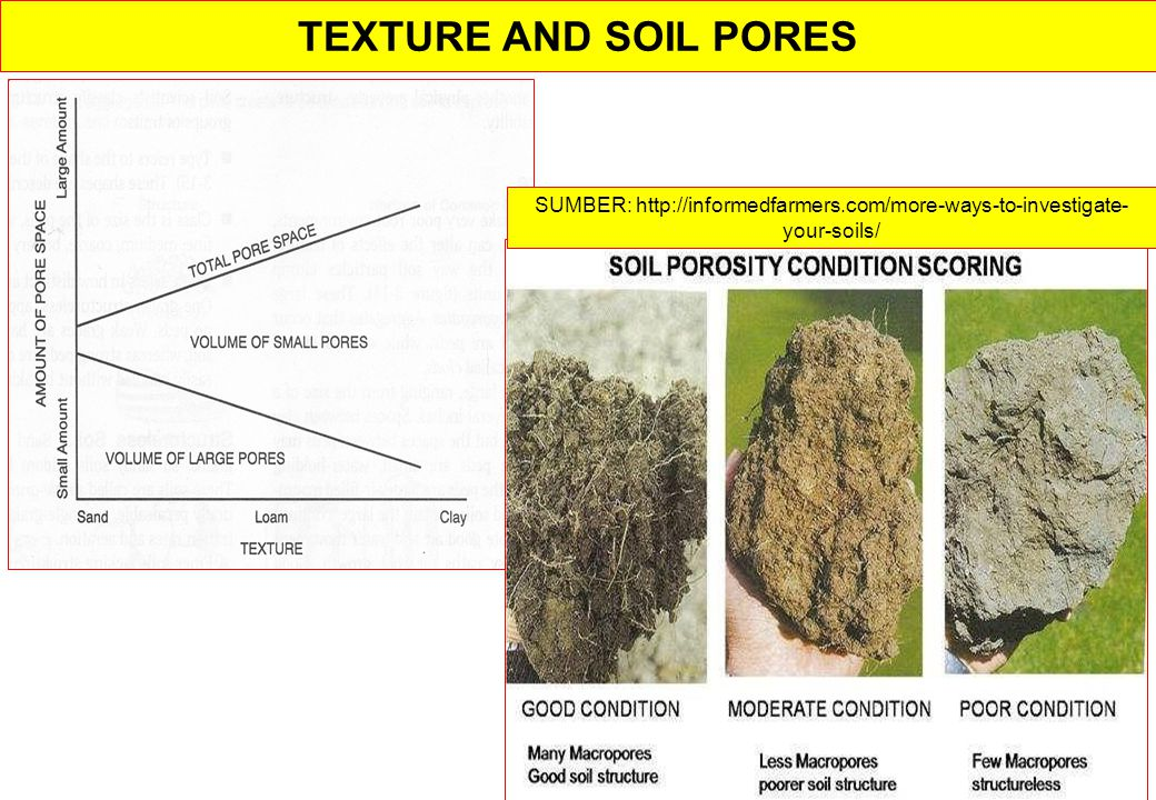 TEXTURE AND SOIL PORES SUMBER: http://informedfarmers.com/more-ways-to-investigate-your-soils/