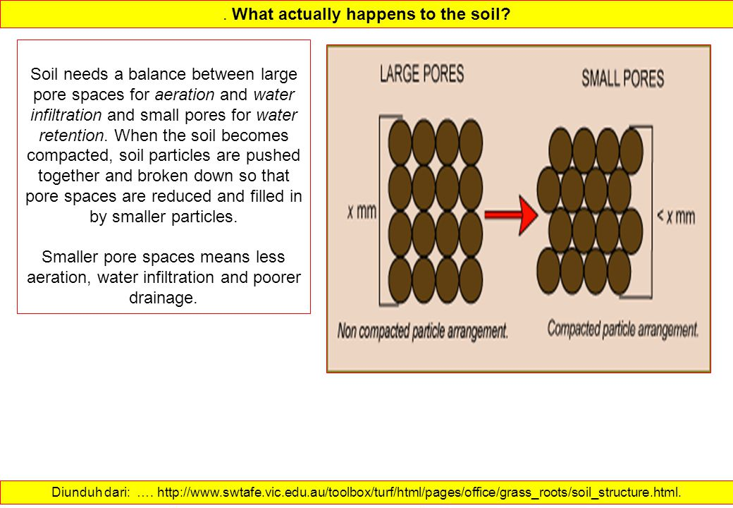. What actually happens to the soil