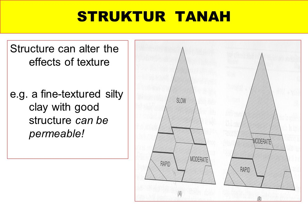 STRUKTUR TANAH Structure can alter the effects of texture