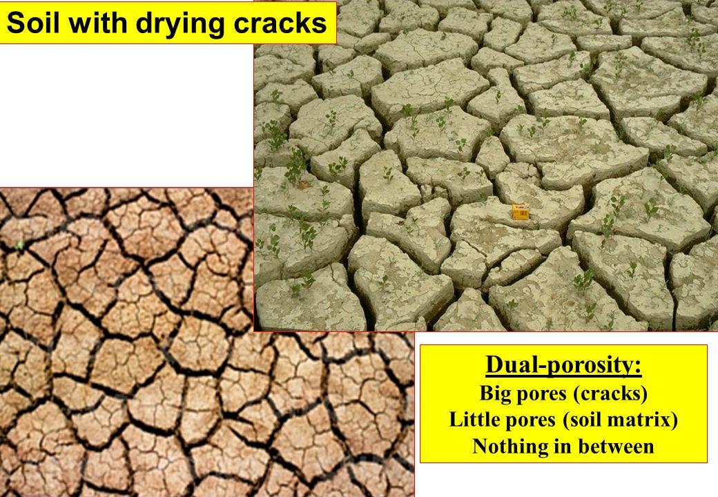 Little pores (soil matrix)