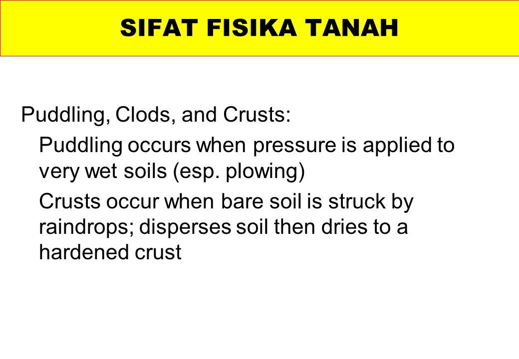 SIFAT FISIKA TANAH Puddling, Clods, and Crusts: