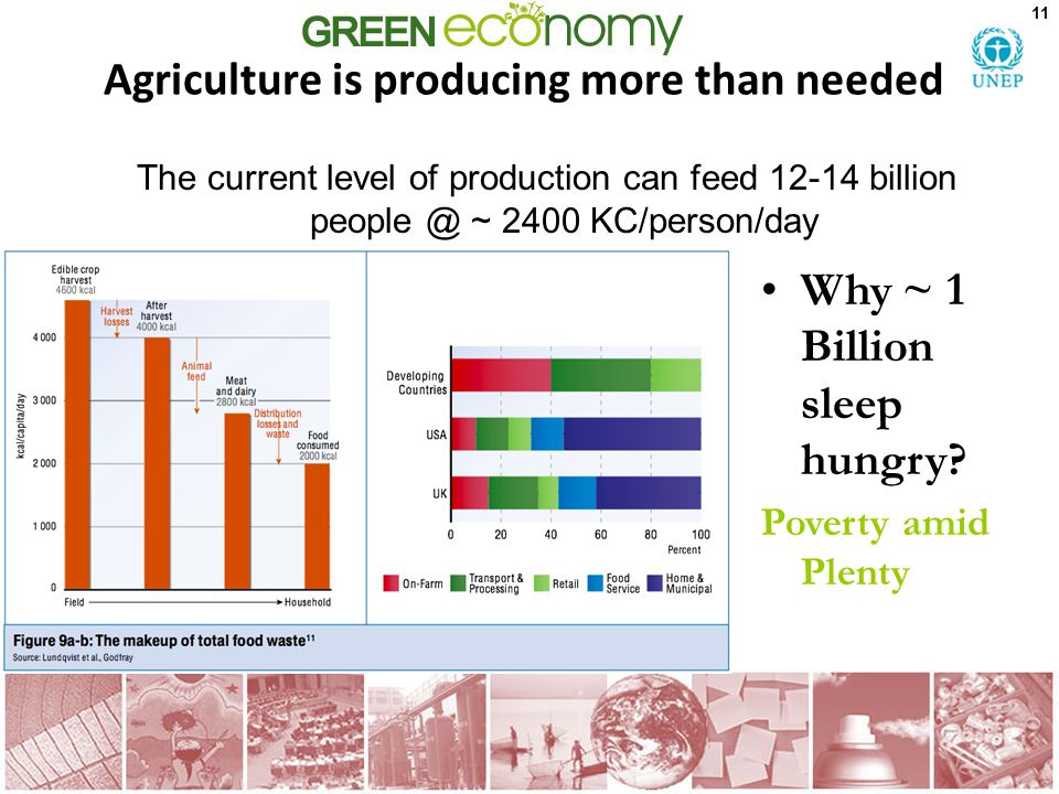 Agriculture is producing more than needed