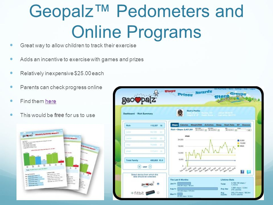 Geopalz™ Pedometers and Online Programs