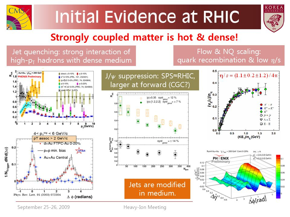 Initial Evidence at RHIC