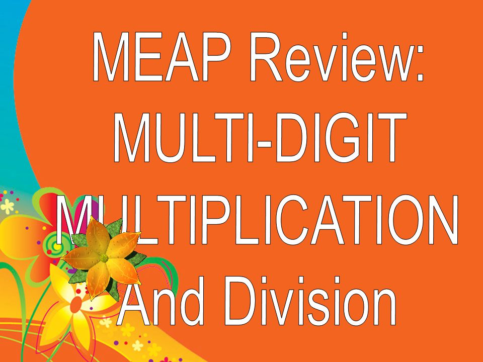 MEAP Review: MULTI-DIGIT MULTIPLICATION And Division