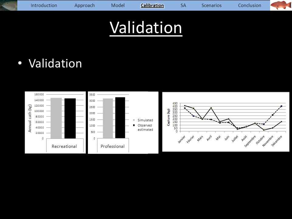 Introduction Approach Model Calibration SA Scenarios Conclusion