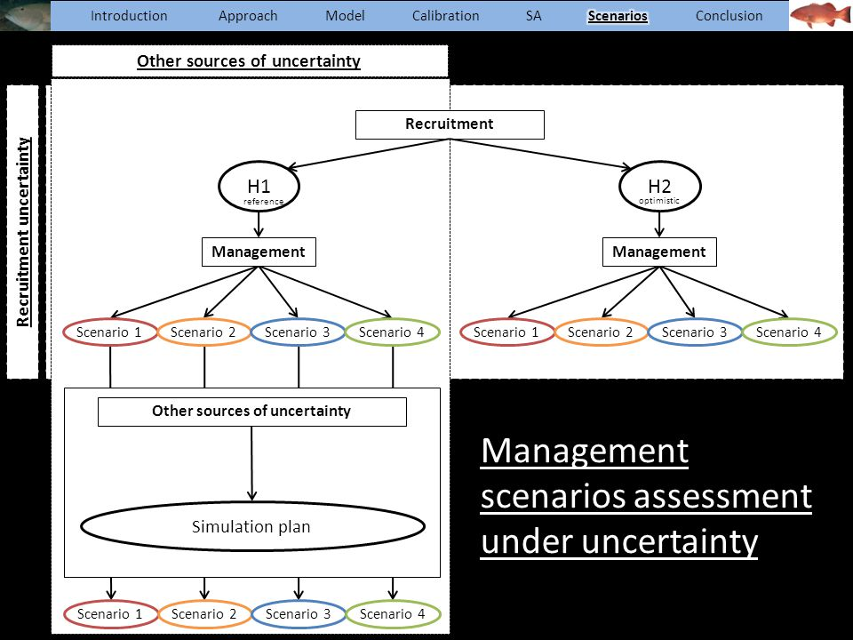 Management scenarios assessment under uncertainty