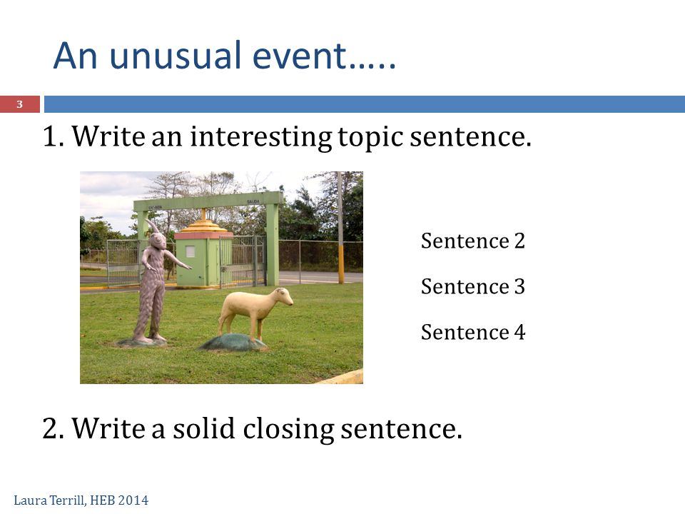 An unusual event….. 1. Write an interesting topic sentence.