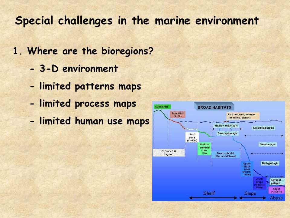 Special challenges in the marine environment