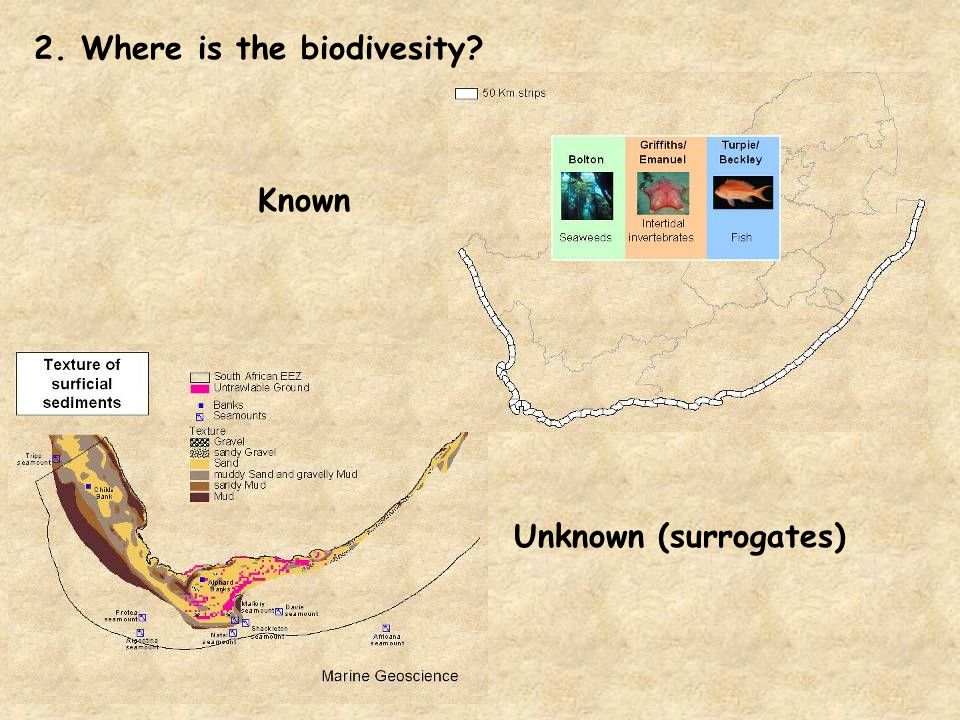 2. Where is the biodivesity