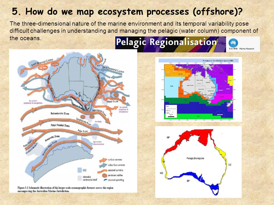 5. How do we map ecosystem processes (offshore)