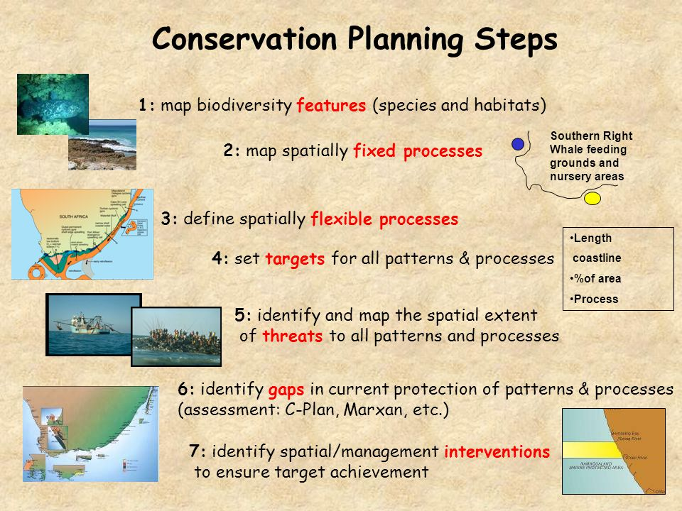 Conservation Planning Steps