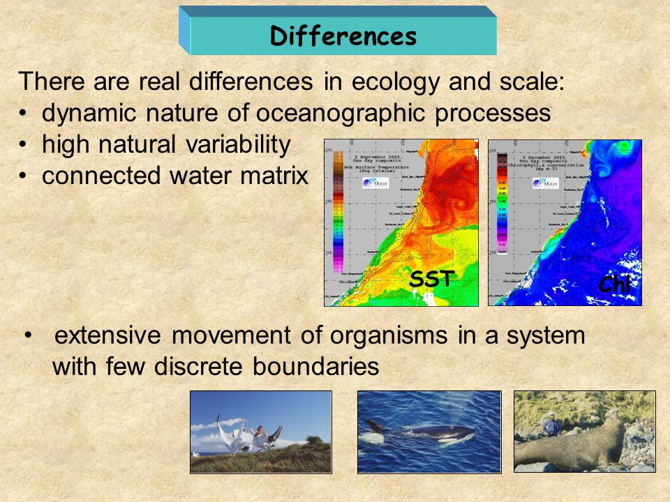 There are real differences in ecology and scale:
