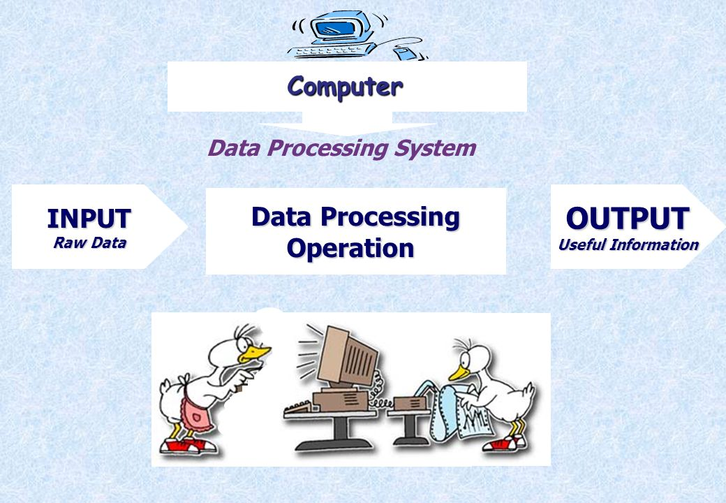 OUTPUT Computer INPUT Data Processing Operation Data Processing System