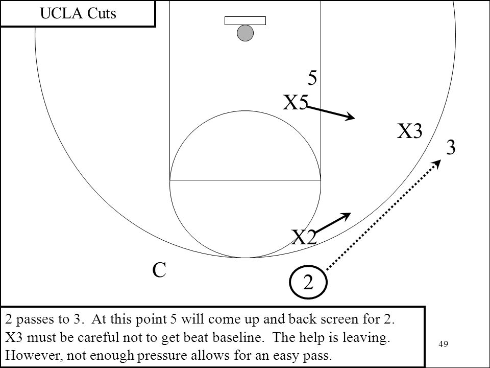 UCLA Cuts 5. X5. X3. 3. X2. C. 2.