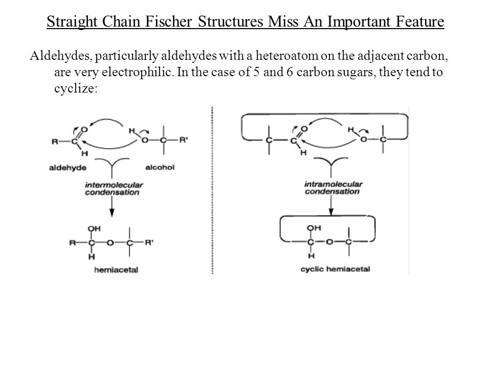 Straight Chain Fischer Structures Miss An Important Feature