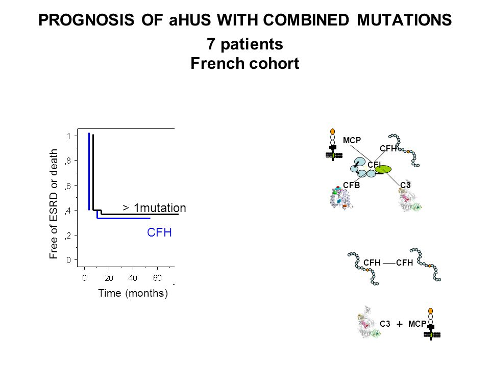 PROGNOSIS OF aHUS WITH COMBINED MUTATIONS 7 patients French cohort