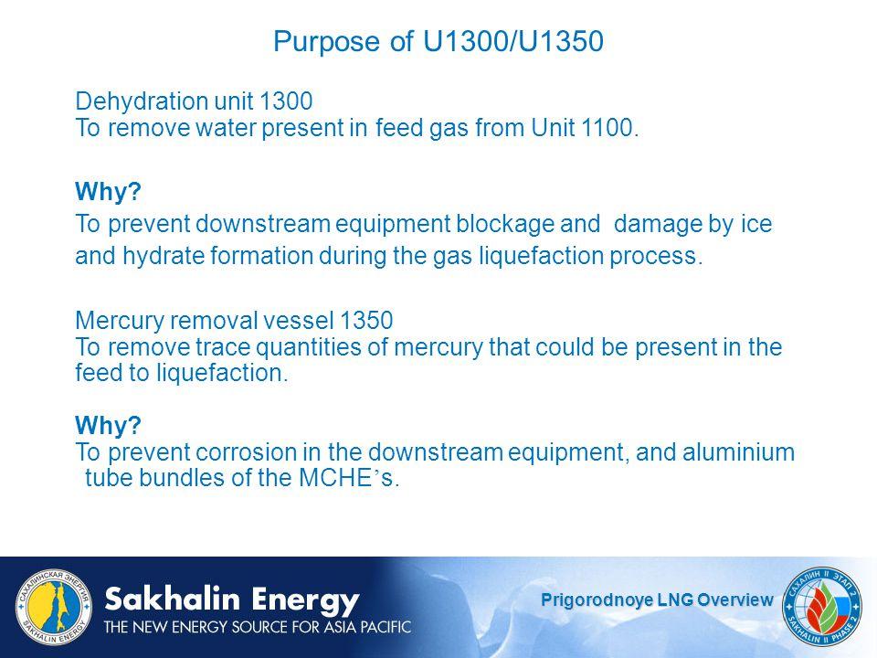 Purpose of U1300/U1350 Dehydration unit 1300