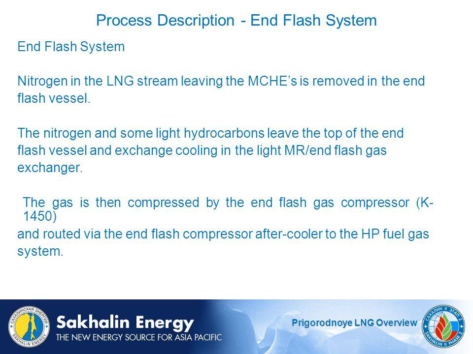 Process Description - End Flash System