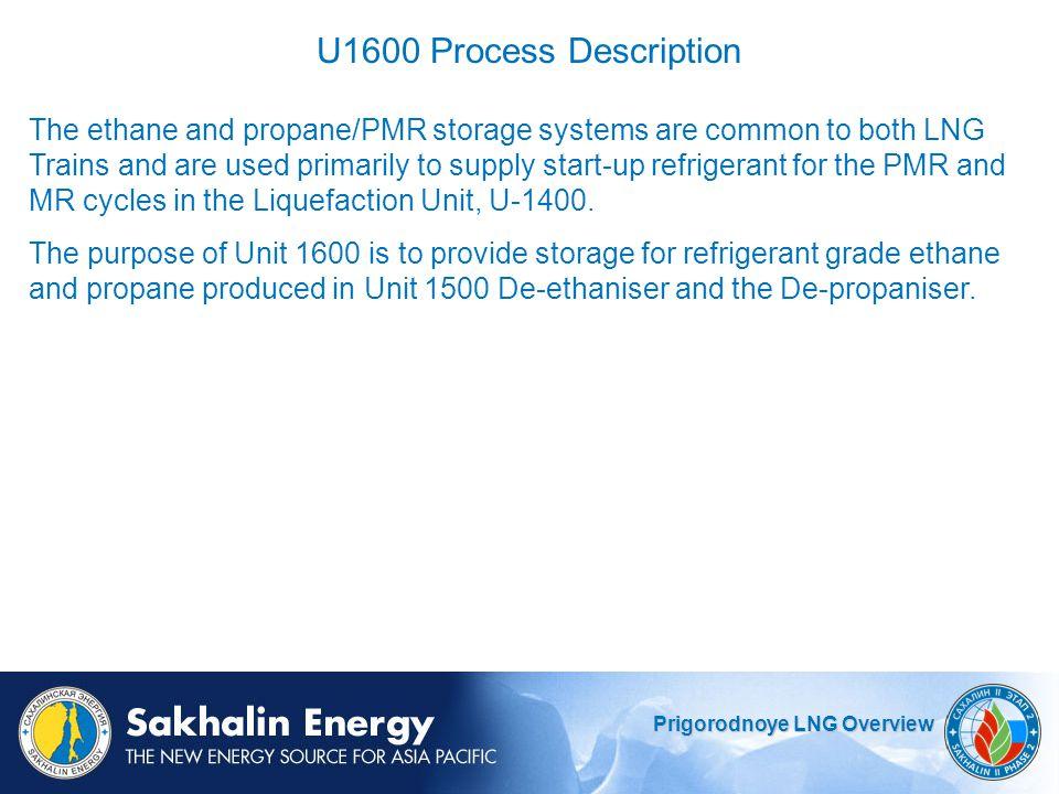 U1600 Process Description