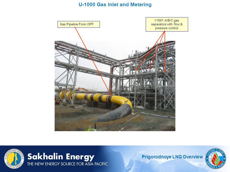 U-1000 Gas Inlet and Metering