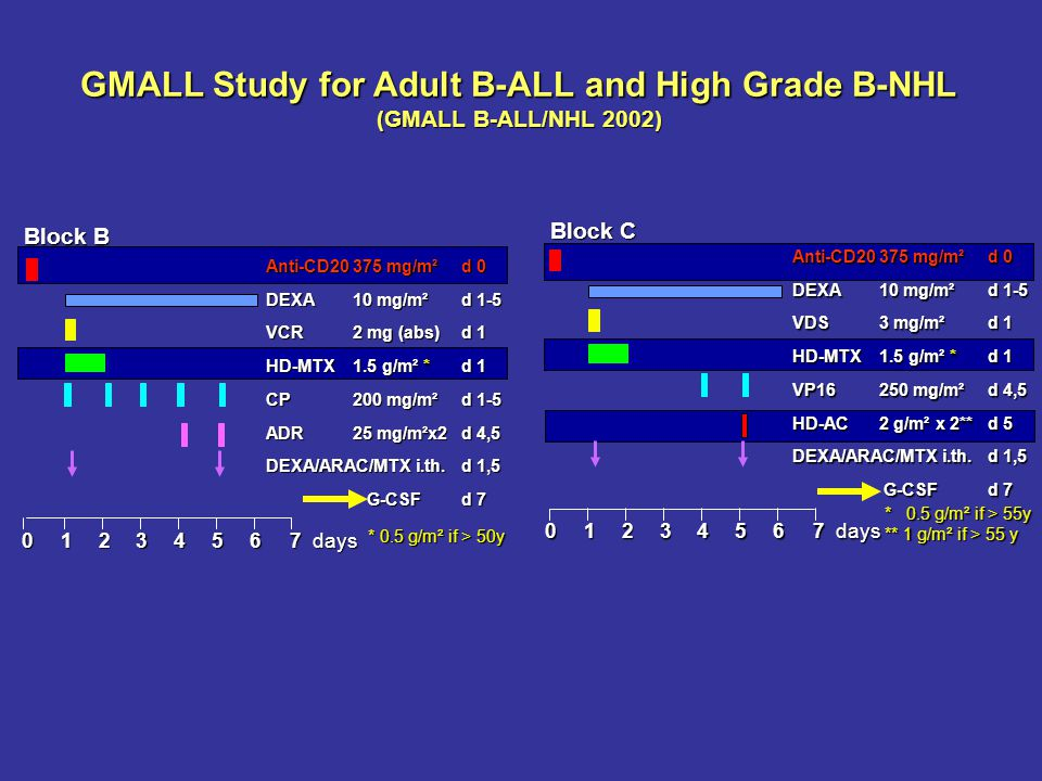 GMALL Study for Adult B-ALL and High Grade B-NHL