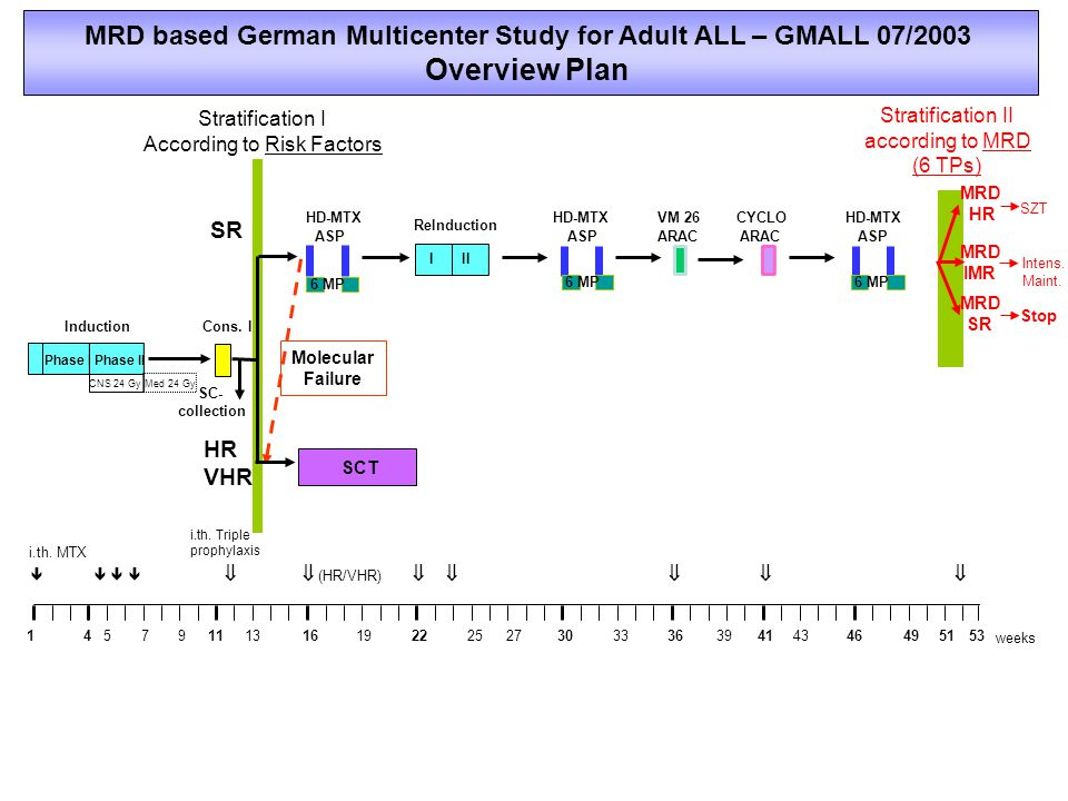 MRD based German Multicenter Study for Adult ALL – GMALL 07/2003
