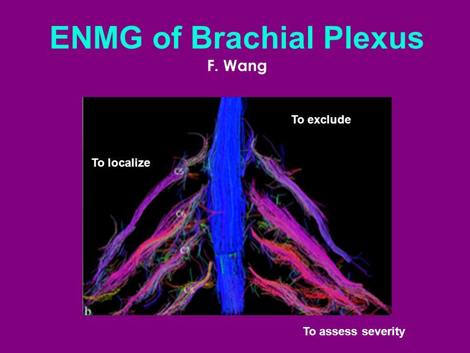 ENMG of Brachial Plexus