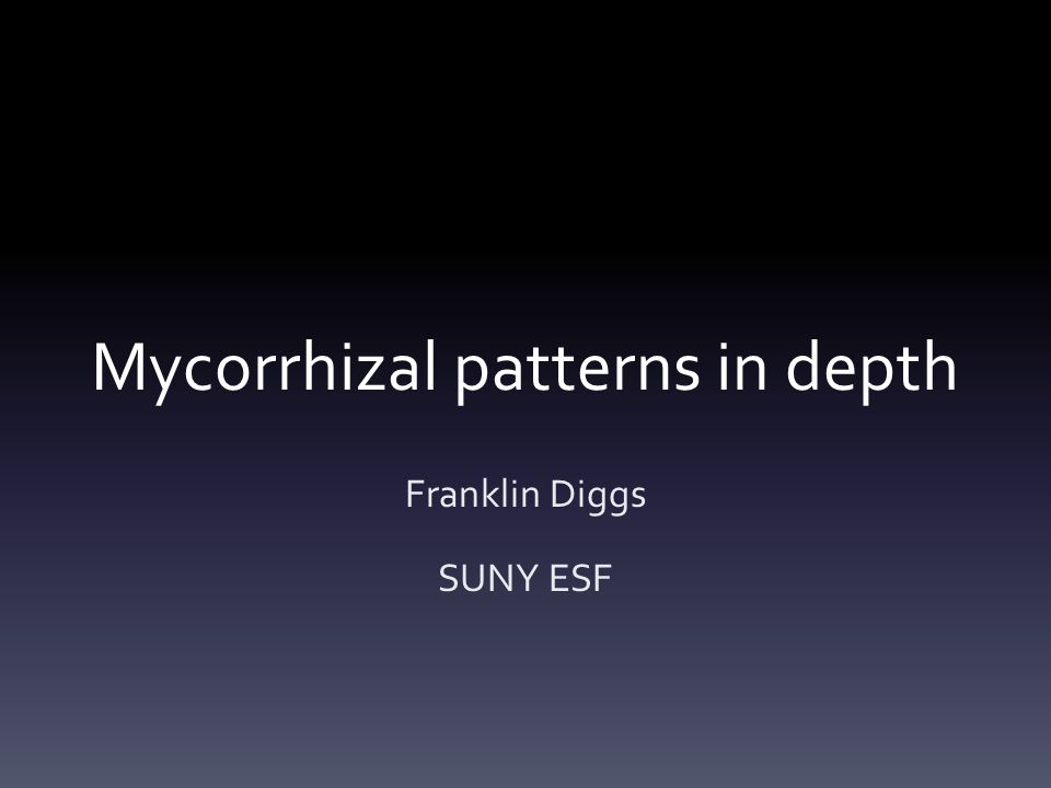 Mycorrhizal patterns in depth