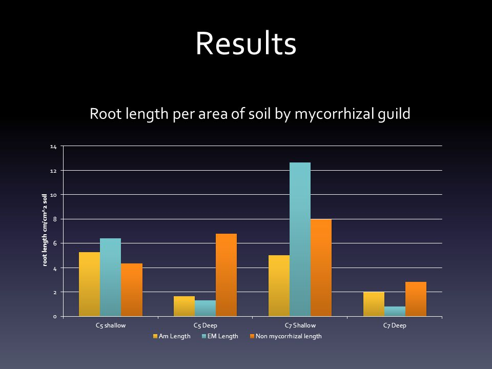 Root length per area of soil by mycorrhizal guild