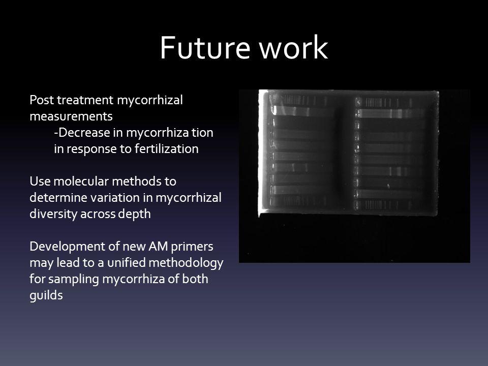 Future work Post treatment mycorrhizal measurements